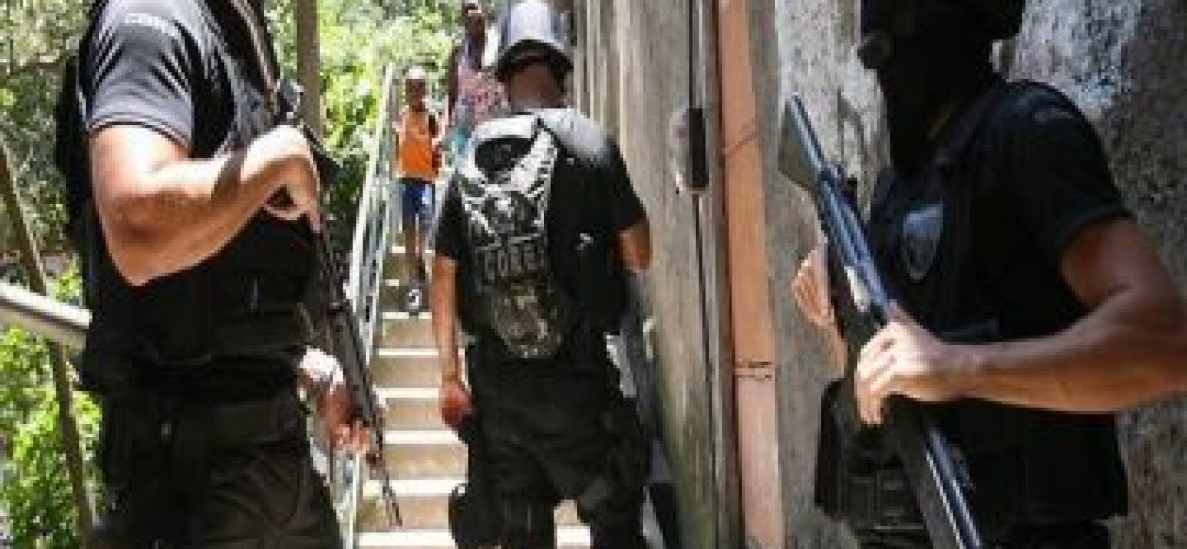 Operação Castanheira combate grilagem de terras e crimes ambientais