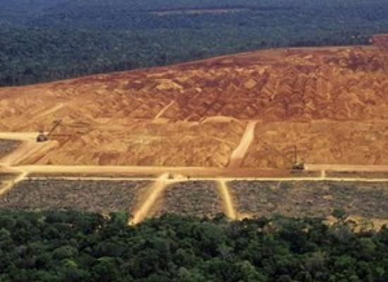 Pará é o estado que mais desmatou entre 2012 e 2013, diz INPE