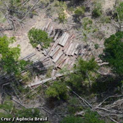 Imazon detectou 402 Km2 de desmatamento na Amazônia Legal em setembro de 2014