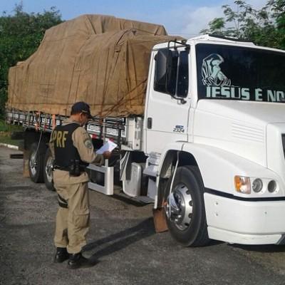 Caminhões são apreendidos com carga de madeira ilegal