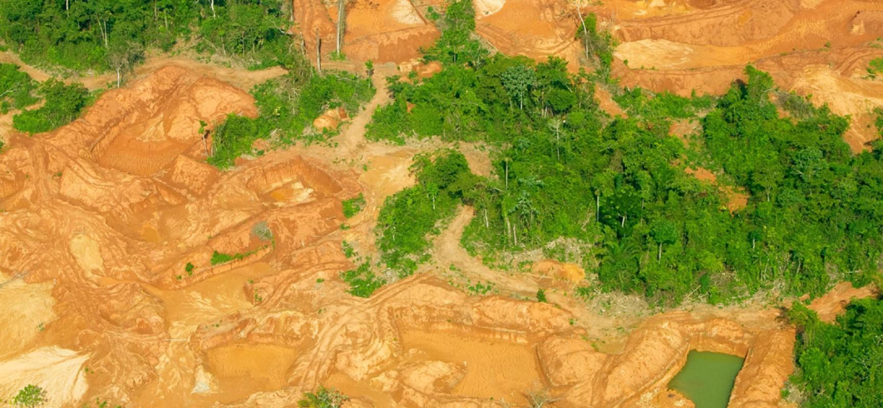 Funai e Ibama desativam garimpos ilegais na Terra Indígena (TI) Kayapó, no Sul do Pará