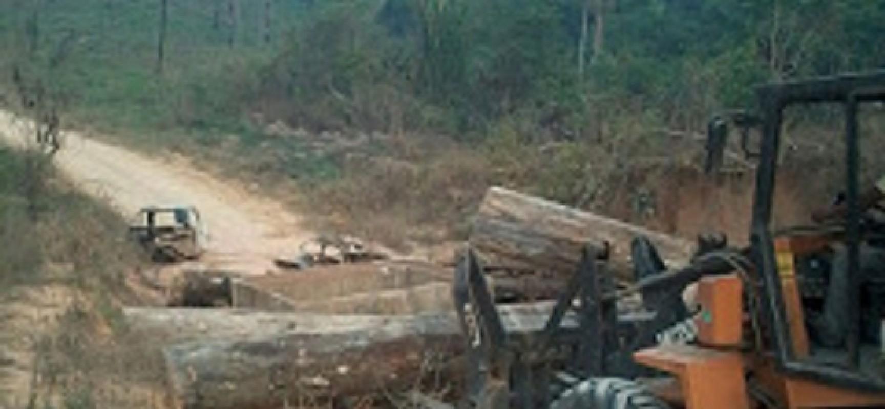 Confronto- Madeireiros ameaçam agentes do ICMBio