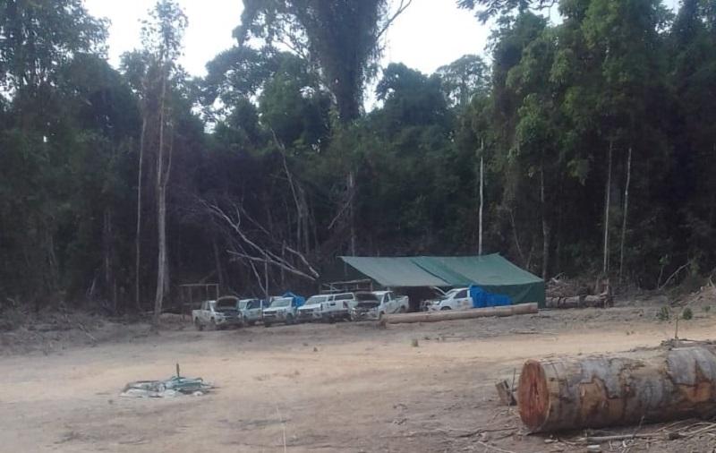 Base do Ibama dentro da Floretsa (Foto:WhatsApp Jornal Folha do Progresso)