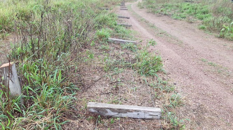 Cercas foram cortadas com motosserra por homens encapuzados. (Foto:Ricardo Foresti para o Jornal Folha do Progresso)